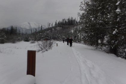 Skiing the inside north fork road