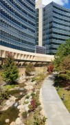 CDC Campus (Atlanta, GA)