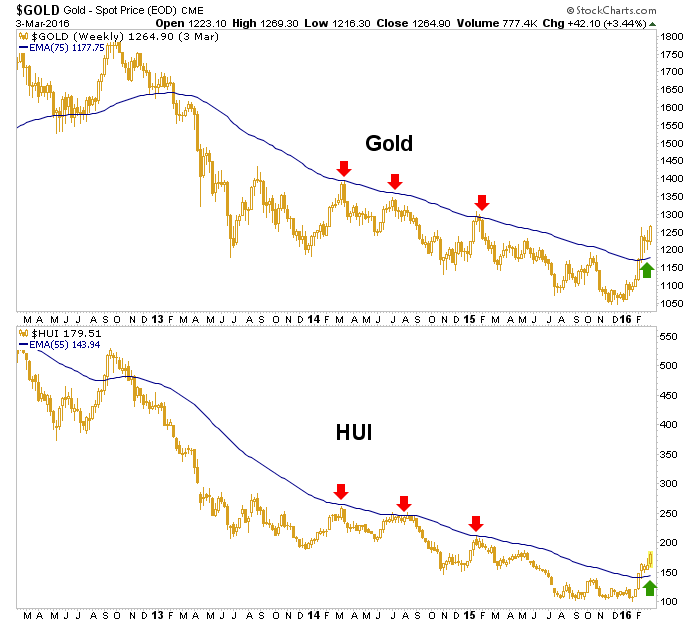 gold and hui