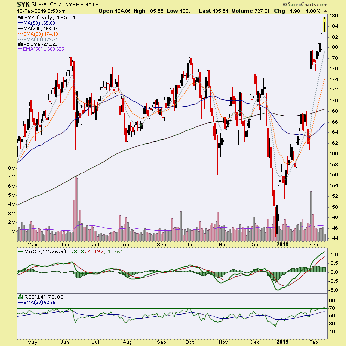 A Few Stocks At New Highs | Notes From the Rabbit Hole