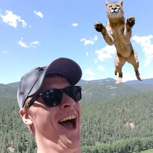 willer-kungfu-cat