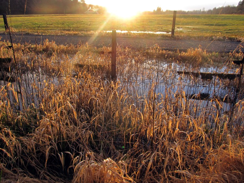 Climate Column: Why Do Farmers Care About Climate Change? Rising Temperatures