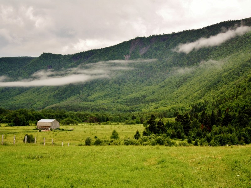 Why Do Farmers Care About Climate Change? Forage and Grazing Lands