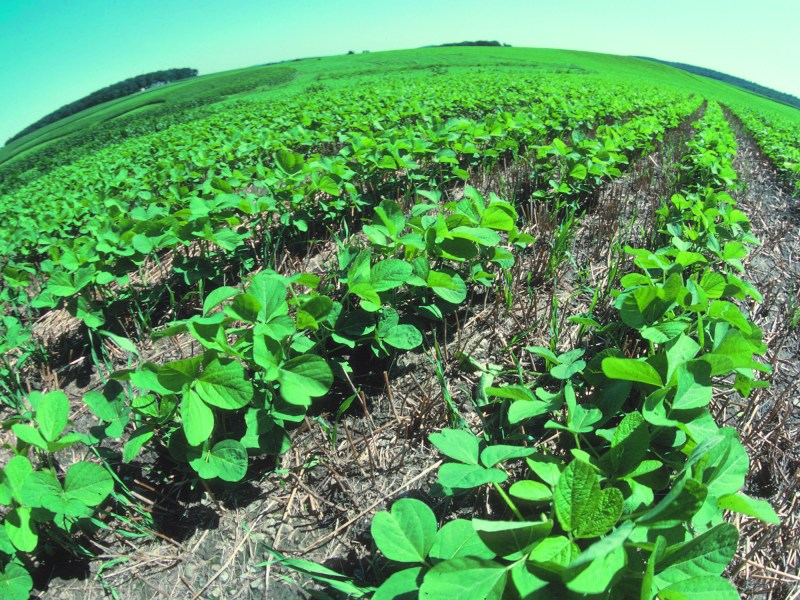 What Can Farmers Do About Climate Change? No-Till