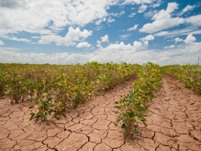 NFU Welcomes Effort to Broaden Disaster Assistance for Farmers and Ranchers