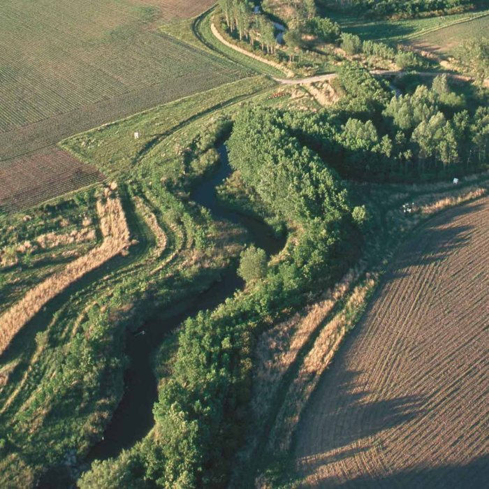 What Can Farmers Do About Climate Change? Riparian Forest Buffers