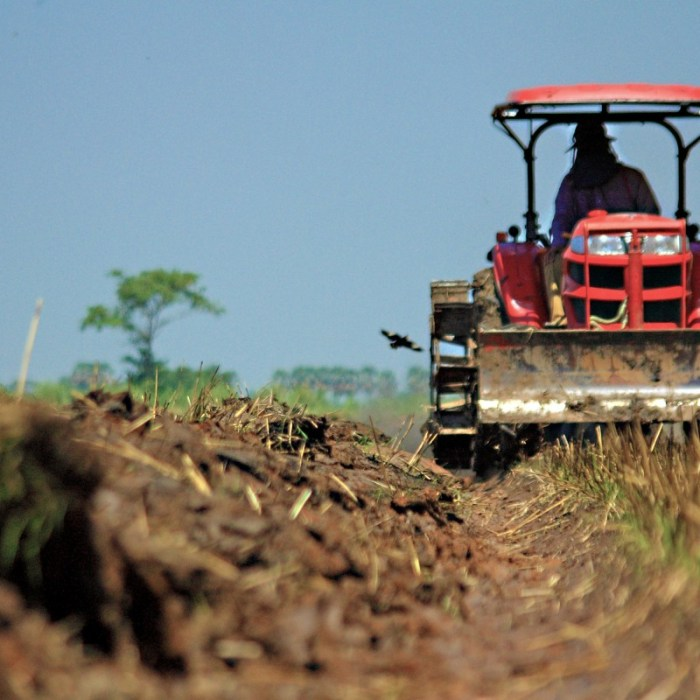What Can Farmers Do About Climate Change? Weed Control & Tillage