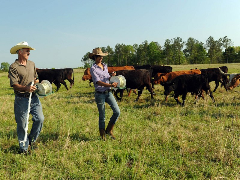 Access to Markets: Cooperatives Benefit Beginning Farmers