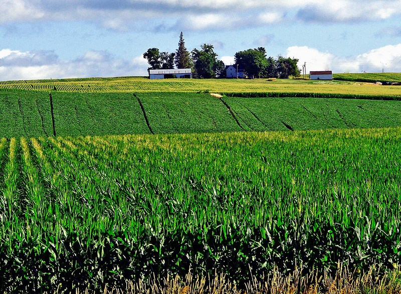"""White House Announces E15 Waiver, RIN Transparency — Farmers Union Encouraged by Move to Higher Levels Blends of Ethanol, But Says """"Compromise"""" is Net Loss for Family Farmers"""