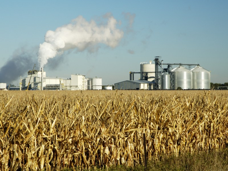 Coalition Pushes EPA to Reconsider Limits on Higher Ethanol Blends