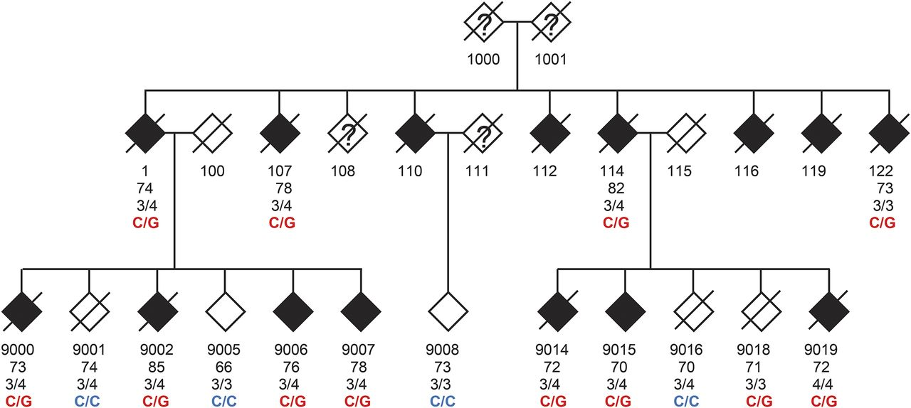 Segregation of a rare TTC3 variant in an extended family