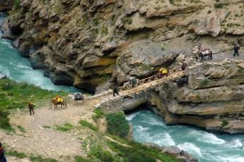 Lama Tenzin Dolpo Trek7