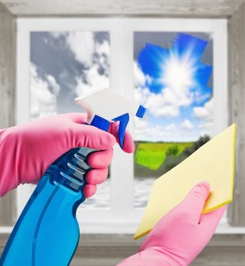 14 Ways to Use Arrowroot Powder: Natural Window Cleaner Recipe