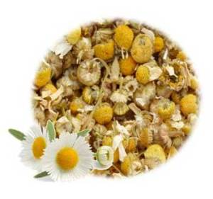 Herbs for Luck and Success: Chamomile Flowers Herb