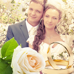 Most Popular Wedding Fragrance Oils Wedding Day Fragrance Oil