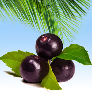 Berry Fragrance Oils: Acai Berry Fragrance Oil