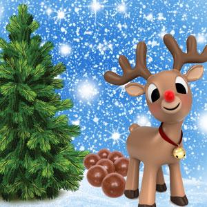Popular Christmas Fragrances: Reindeer Poo Fragrance Oil