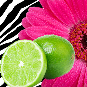 Lime Fragrance Oils for Scented Crafts: Hot Pink Lime Fragrance Oil