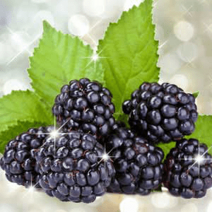 Berry Fragrance Oils: Blackberry Bling Bling Fragrance Oil