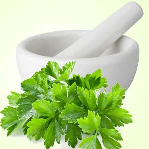 Bubbling Bath Salts Recipe: Cool Cilantro Fragrance Oil