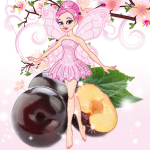 Popular Christmas Fragrances: Dance of The Sugar Plum Fairy Fragrance Oil