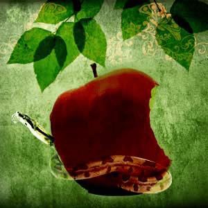 Forbidden Fruit Fragrance Oil