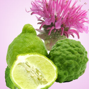 10 Ginger Fragrance Oils: Gingered Bergamot Fragrance Oil