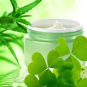 St Patrick's Day Activities for Adults: Green Clover and Aloe Fragrance Oil