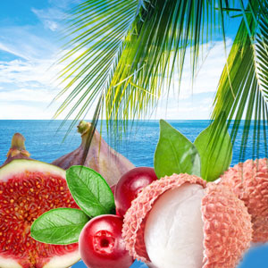 Popular Tropical Fragrance Oils: Kulu Bay Fragrance Oil