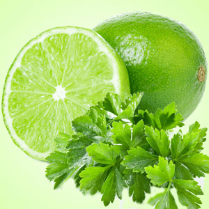 Lime Fragrance Oils for Scented Crafts: Lime Cilantro Fragrance Oil