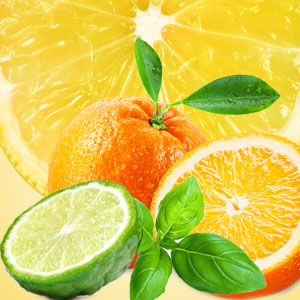 St Patrick's Day Activities for Adults: NG Cool Citrus & Basil Type Fragrance Oil
