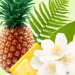 Top Exotic Fragrances: Pineapple Jasmine Fragrance Oil