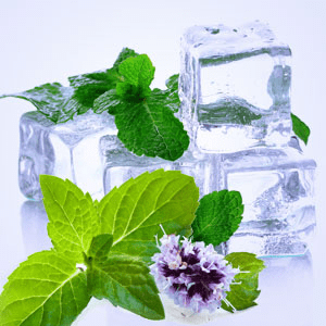Spearmint Fragrance Oil