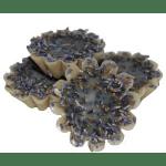 Lavender Fragrance OilsLemon Lavender Type Fragrance Oil Recipe