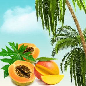 Popular Tropical Fragrance Oils: Papaya Guava Mango Fragrance Oil