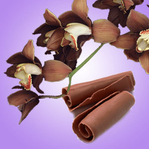 Fragrance Oils for Warmers Chocolate Orchid Fragrance Oil