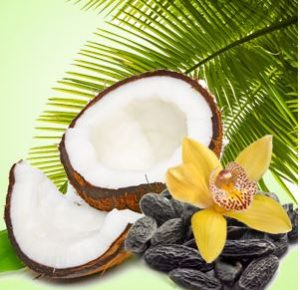 Best Coconut Fragrance Oils NG Exotic Coconut Type Fragrance Oil