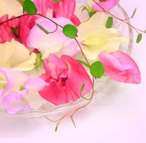 Best Floral Fragrance Oils Sweet Pea Fragrance Oil