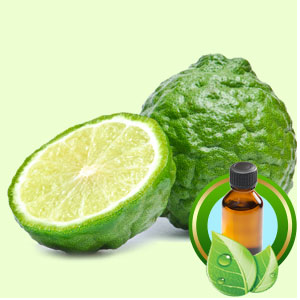 Top 25 Essential Oils Bergamot Essential Oil
