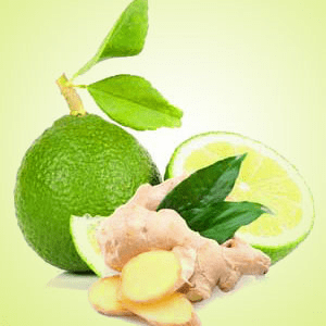 Lime Fragrance Oils for Scented Crafts: Ginger Lime Fragrance Oil