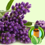 What Can I Use to Flavor Lip Balm: Lavender Essential Oil