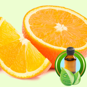 Top 25 Essential Oils Orange Midseason (5 Fold) Essential Oil