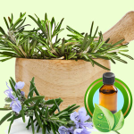 Soap for Acne Recipe: Rosemary Essential Oil