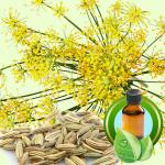 Best Essential Oil BlendsLucky Leprechaun Face Mask Recipe sweet fennel
