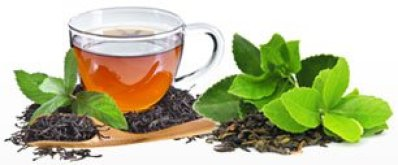 Best Tea Fragrance Oils