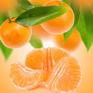 Strong Citrus Fragrance Oils Tangerine Dreams Fragrance Oil