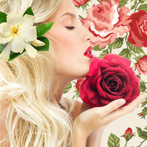 Best Rose Fragrance Oils Aromatherapy Passion Fragrance Oil