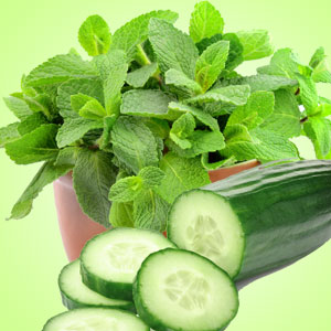 Best Cucumber Fragrance Oils Cucumber Mint Fragrance Oil
