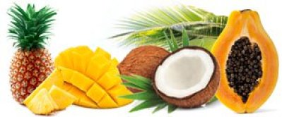 Popular Tropical Fragrance Oils