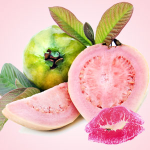 What Can I Use to Flavor Lip Balm: Guava Flavoring Oil
